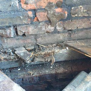 dry rot flooring